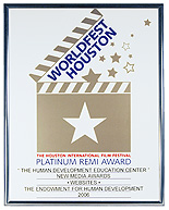 Premio Remi de Platino del WorldFest Houston al Sitio Web